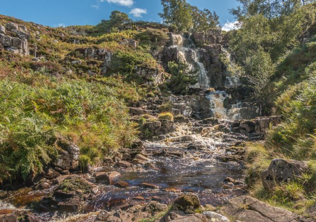 Richard Laidler | Blea Beck Force, Upper Teesdale
