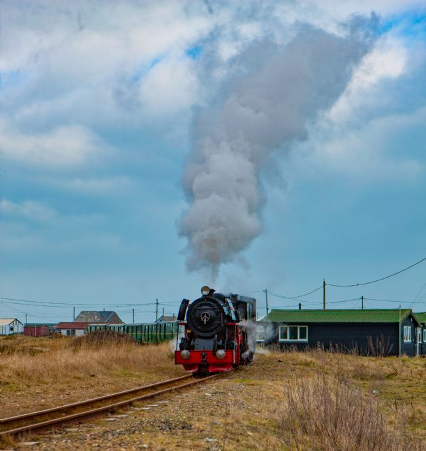 Tom Dolezal | Black Prince at Dungeness