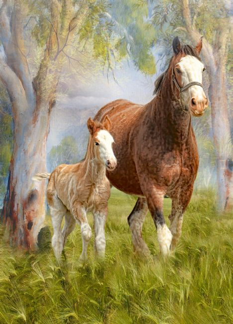 Trudi Simmonds | Clydesdale Mare and Foal