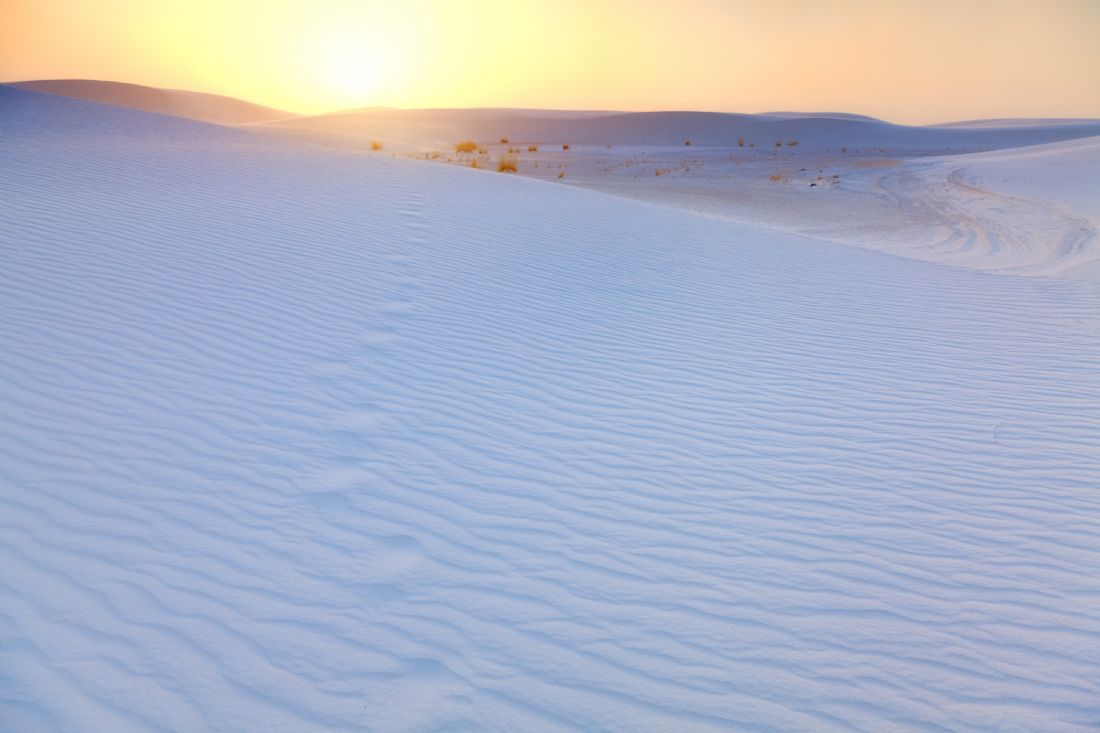Alexey Stiop | White Sands Footprints