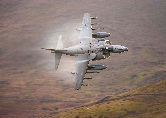 Rory Trappe | RAF Harrier