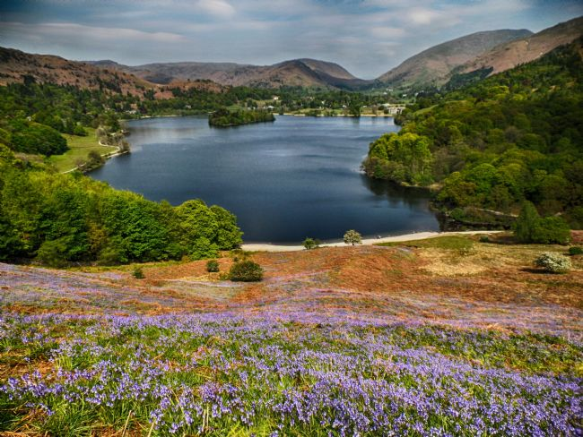 yvonne carroll | Grasmere lake taken from Loughrigg Fell when it was carpeted in bluebells in May