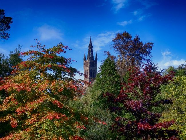 yvonne carroll | Glasgow University in autumn