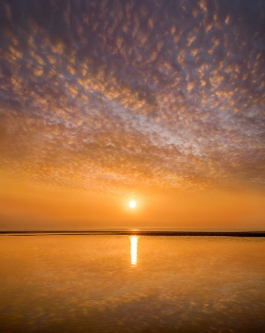 Adrian Campfield | Golden Sunrise over Pett Level