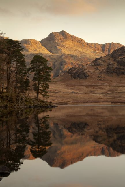 Michael Yates | Blea Tarn Reflections