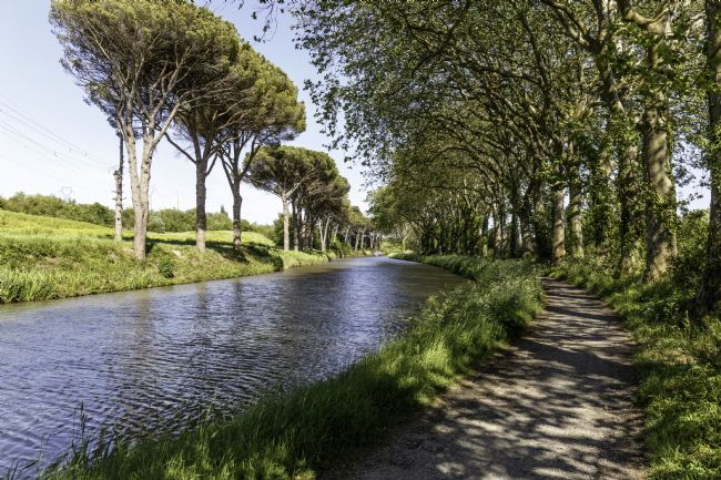 Roger Hollingsworth | Canal du Midi