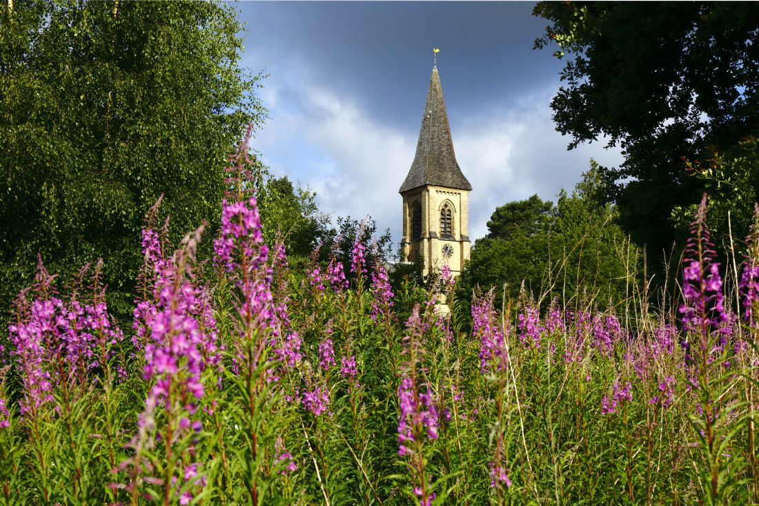 James Brunker | St Peters Church and Rosebay Willowherb Southborough Common Kent
