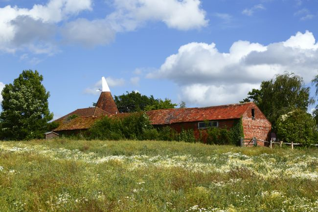 James Brunker | Oast House and Daisy Field in Summer Tudeley Kent