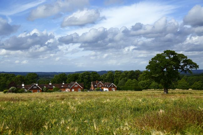 James Brunker | View over former Somerhill Estate near Tonbridge Kent