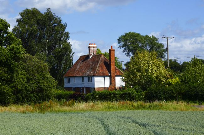 James Brunker | Wealden cottage and cornfield Capel Kent