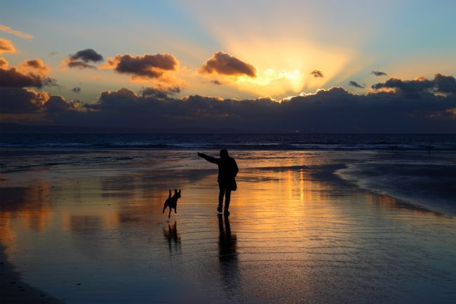 James Brunker | Walking the Dog at Dunraven Bay South Wales