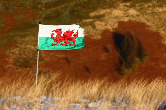 James Brunker | Welsh Flag Flying Above the Rhondda Valley Wales