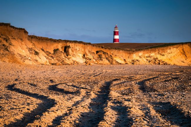 David Powley | Morning Light on Happisburgh Beach