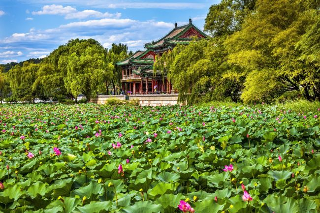 William Perry | Red Pavilion Lotus Garden Summer Palace Beijing China