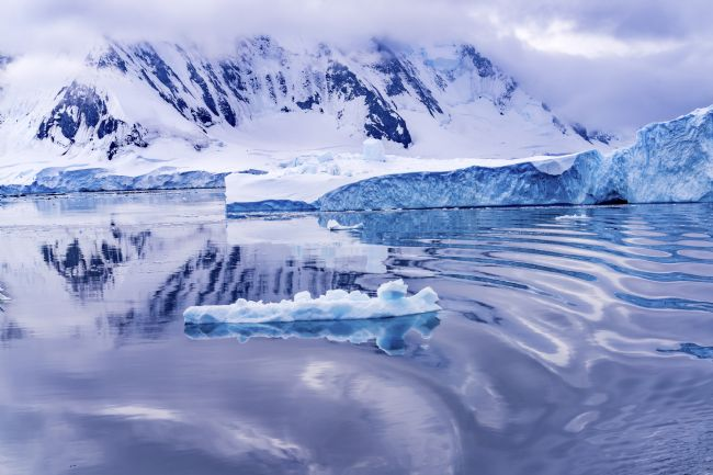 William Perry | Snow Mountains Blue Glaciers Refection Dorian Bay Antarctica