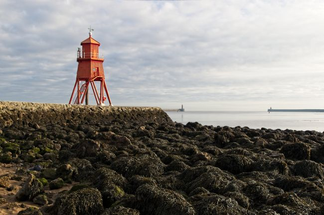 Robert Cole | The Herd Groyne Lighthouse, South Shields