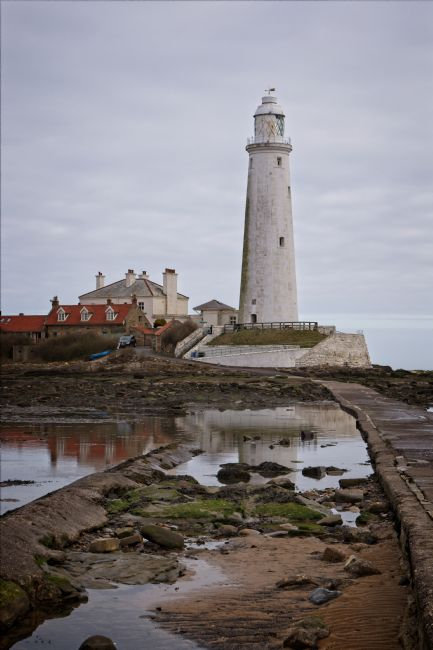 Rob Cole | St Mary's Lighthouse, Whitley Bay