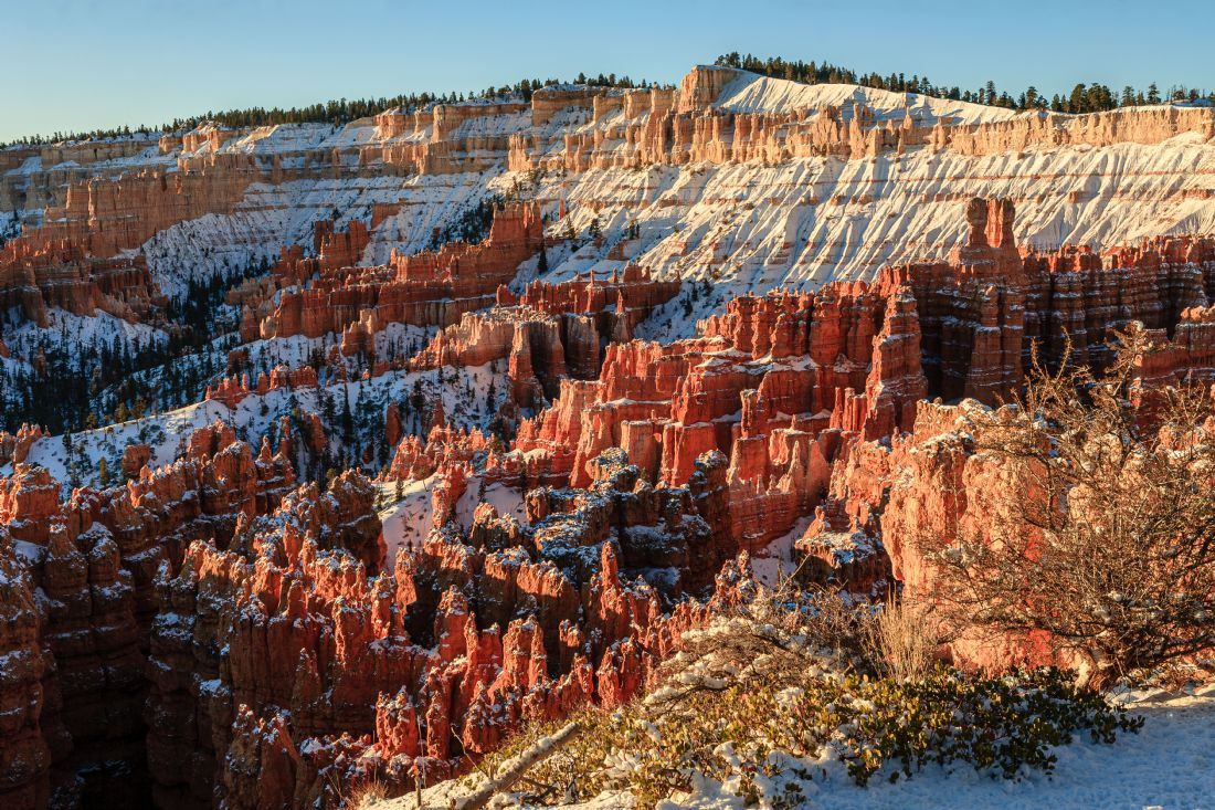 Peter O'Reilly | Snow in Bryce Canyon