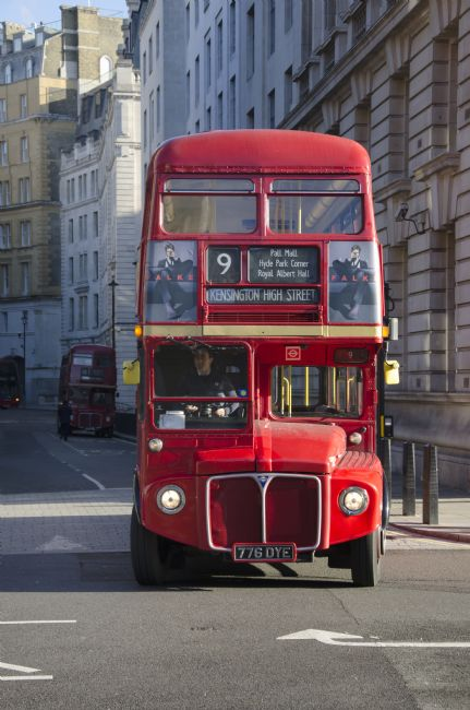 Steve Stamford | London Red Bus