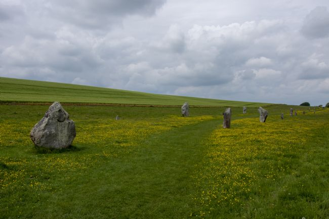 Steve Stamford | The avenue at Avebury