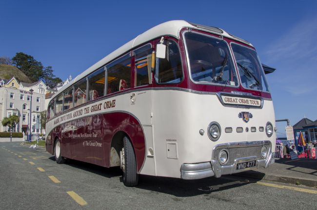 Steve Stamford | Great Orme bus