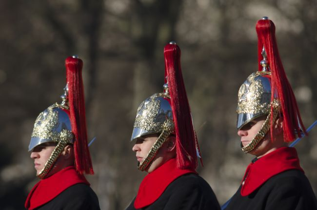 Steve Stamford | Blues and Royals Life Guards