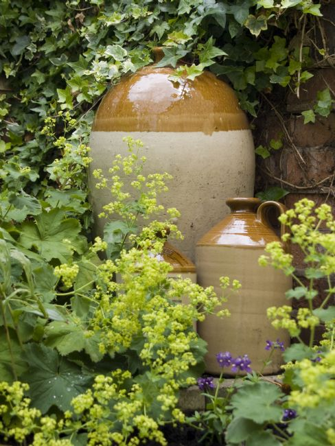 Steve Stamford | Three jugs in a garden