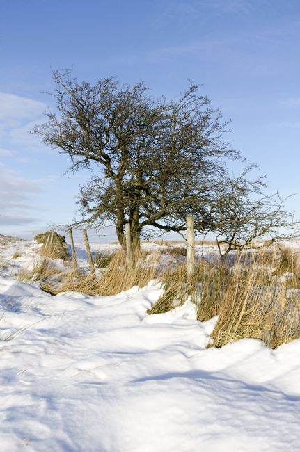 Steve Stamford | Peak District winter
