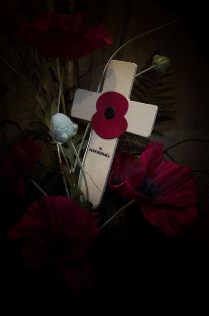 Steve Stamford | Poppy on the cross
