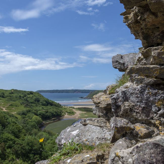 Steve Stamford | View from Pennard Castle square