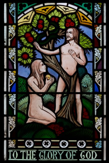 Steve Stamford | Adam and Eve