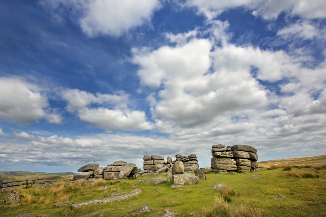 David Hare | Dartmoor Tor