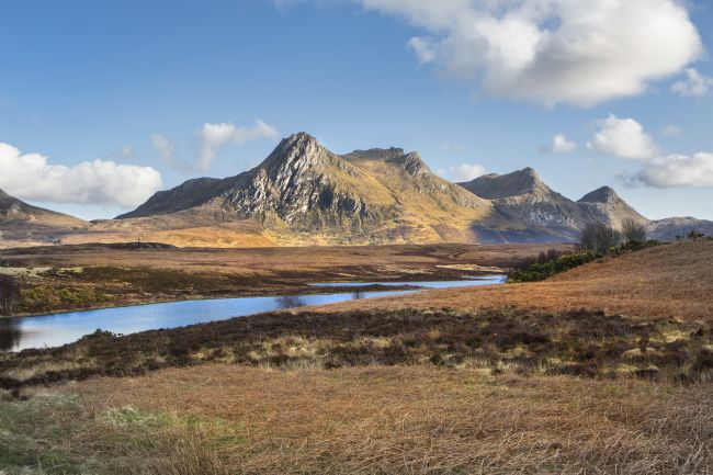 David Hare | Ben Loyal