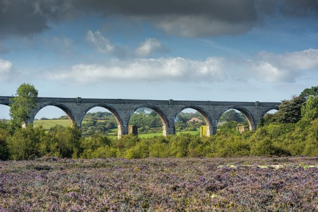 Mary Fletcher | Carnon Viaduct