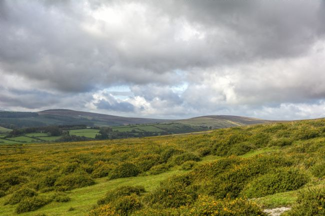 Mary Fletcher | Moorland of Dartmoor