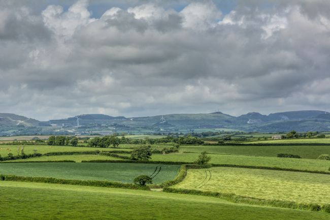 Mary Fletcher | St Austell Farmland