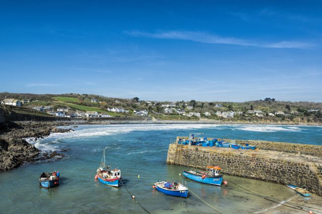 Mary Fletcher | Coverack Harbour