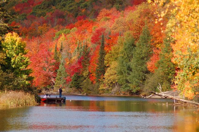 Roger Simmons | Fall Fishing.jpg