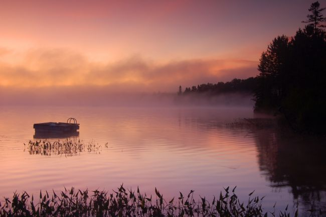 Roger Simmons | Misty Morning Sunrise.jpg