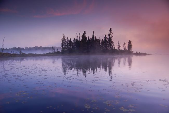 Roger Simmons | Foggy Morning On The Lake