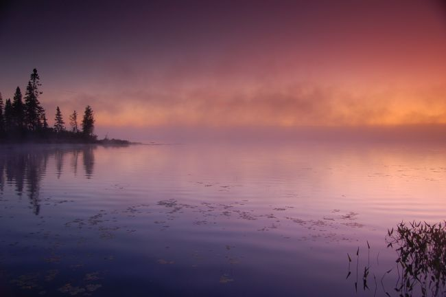 Roger Simmons | Misty Deer Lake Sunrise