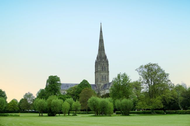 Chris Langley | Salisbury Cathedral and the Close in Spring