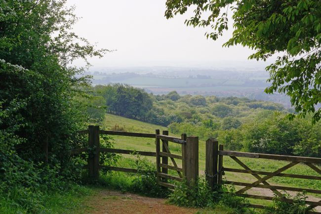 Chris Langley | Gates on Watlington Hill, Oxfordshire
