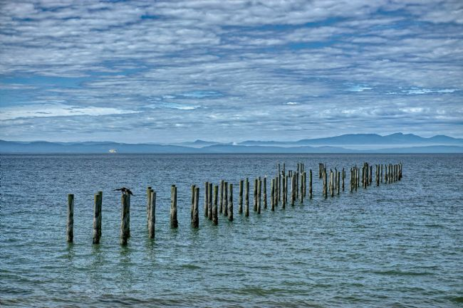 Chris Langley | Old Jetty - Points Roberts Washington
