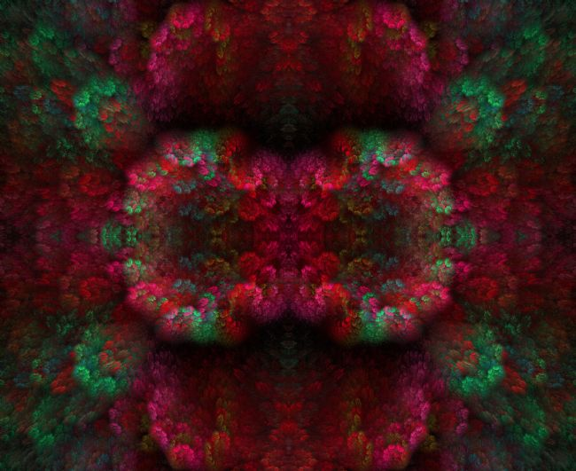 Jay Lethbridge | Floral Abstract