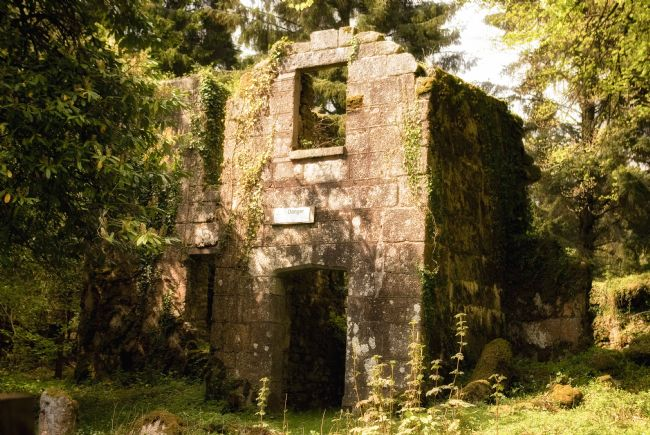 Jay Lethbridge | Remains of Longstone Manor on Dartmoor National Park