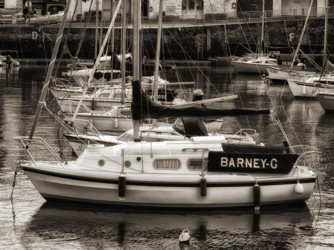 Jay Lethbridge | Barney G and boats at Paignton Harbour