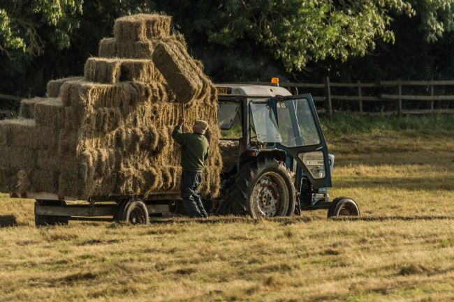 Jacovos Jacovou | Farmer hay stacking