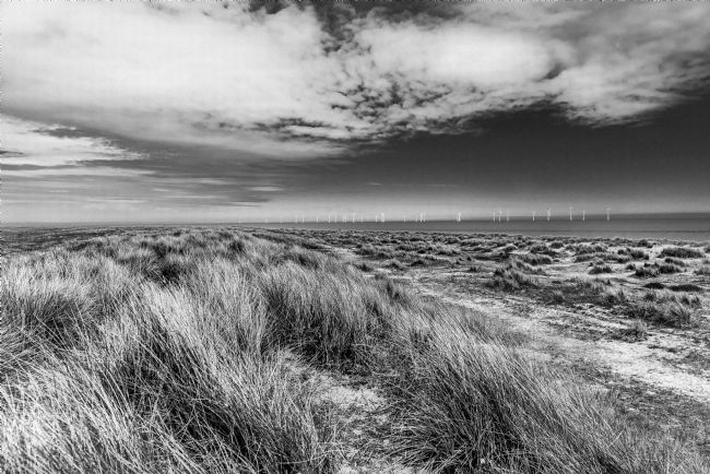 Jacovos Jacovou | Great Yarmouth sand dunes