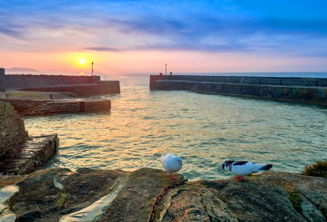 Gordon Maclaren | Doves and a Sunrise, Charlestown Cornwall
